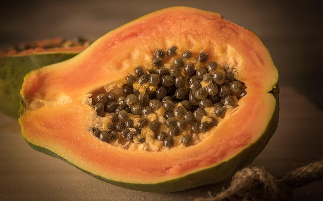 Grüne Papaya-Suppe
